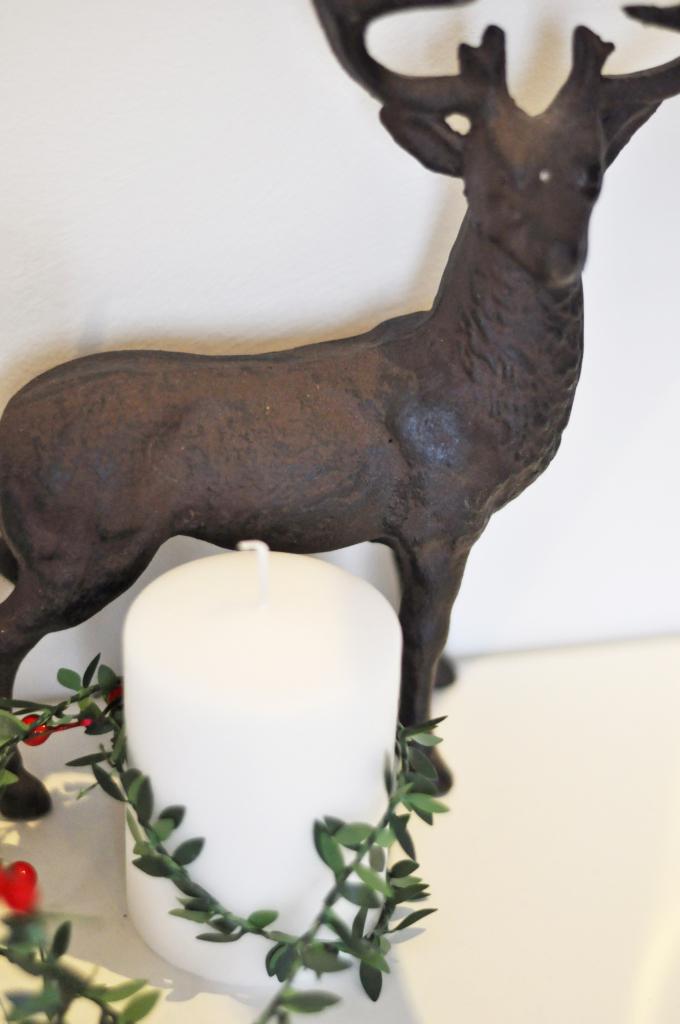 reindeer_home_christmas