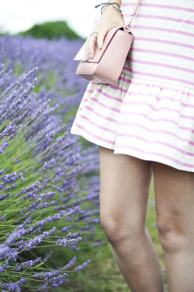 lavender08