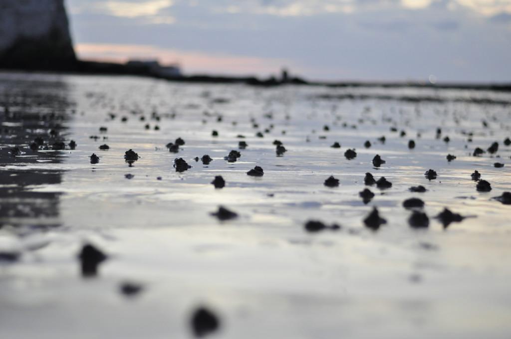 sunset-on-the-beach-03