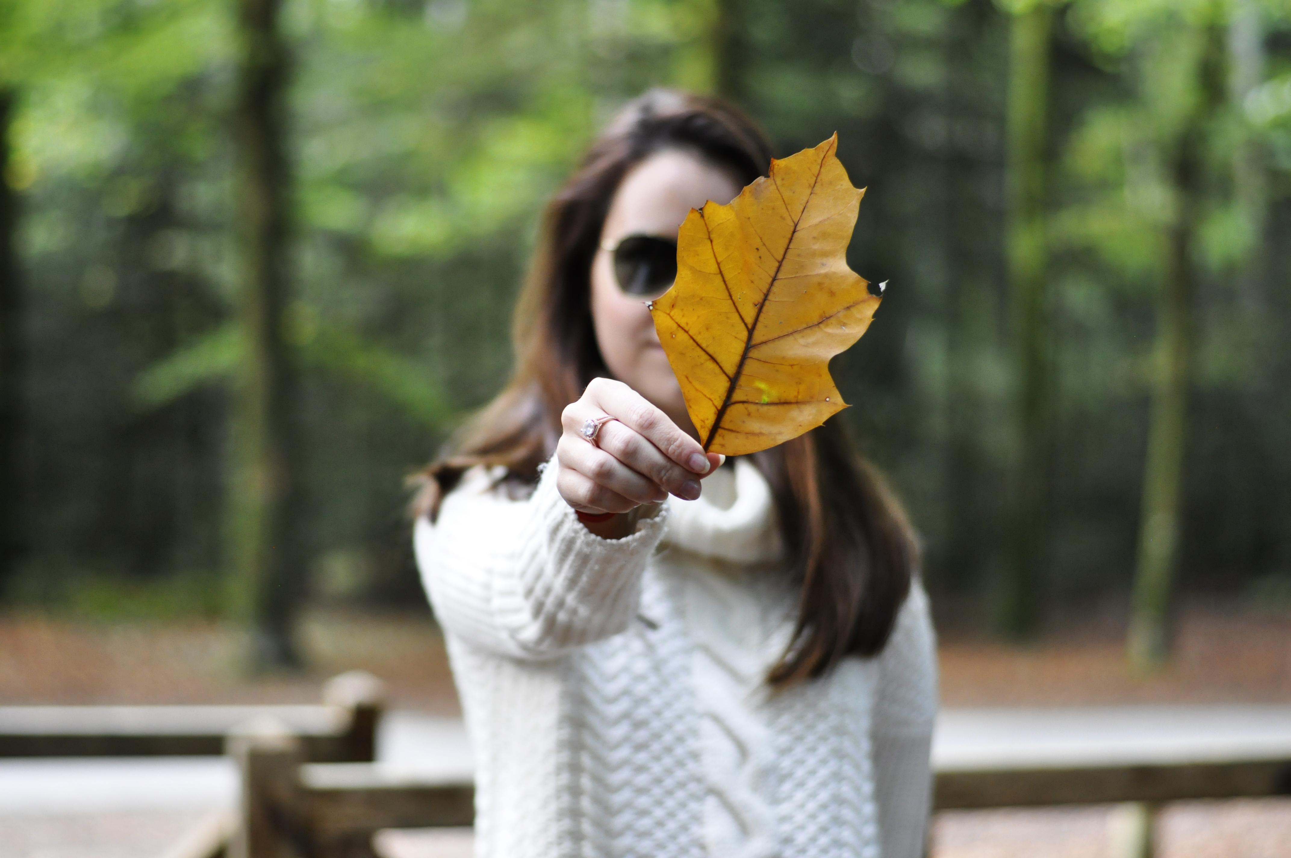 fall-look copy