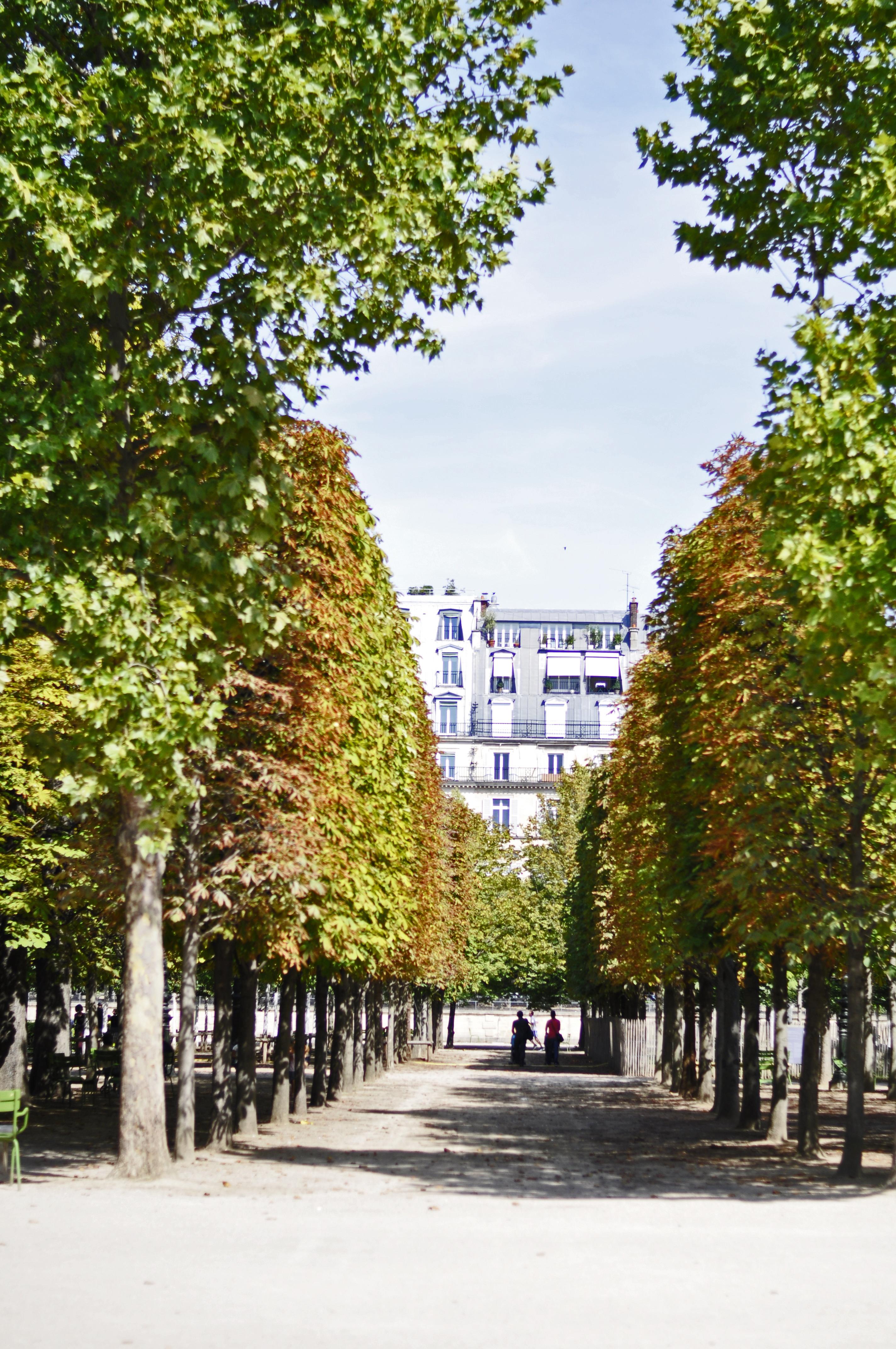 jardin-de-paris
